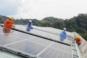 3 kịch bản chuyển dịch năng lượng bền vững ở Đồng bằng sông Cửu Long