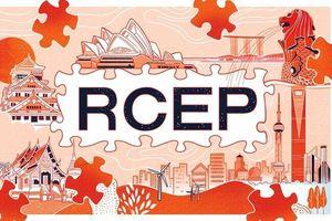Nhật Bản muốn đưa Ấn Độ quay trở lại bàn đàm phán RCEP