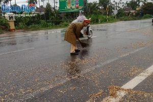 Quảng Ngãi: Xử lý nghiêm tài xế xe tải để rơi vãi gỗ dăm trên Quốc lộ 1