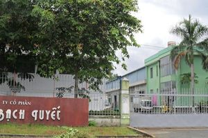 Bông Bạch Tuyết (BBT) chấp nhận cho Đầu tư Sài Gòn 3 Capital chào mua công khai nâng sở hữu lên 51%
