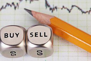 BCG, TCH, GAB, GEG, AGG, TEG, DHC, NTL, RDM, PBC, MPT, EBA, IBD, PGN, NTF: Thông tin giao dịch lượng lớn cổ phiếu