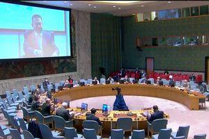 Hội đồng Bảo an thảo luận tình hình khu vực Các Hồ Lớn châu Phi