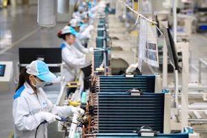 Hỗ trợ doanh nghiệp tiếp cận khoa học công nghệ, đổi mới sáng tạo để tăng năng suất lao động