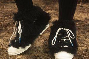Giày Converse dính lông xanh, đen bị chê xấu