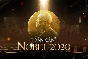 Giải Nobel 2020: Mang nhiều ý nghĩa giữa đại dịch