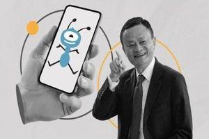 Tập đoàn 'con kiến' của Jack Ma nhắm mục tiêu IPO 'khủng long bạo chúa'