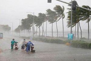Miền Trung mưa lớn, Hà Tĩnh, Quảng Bình mưa đặc biệt to