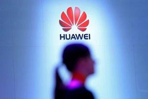 Trung Quốc thúc giục Canada thả CFO Huawei Mạnh Vãn Chu