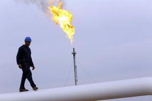 Giá xăng dầu hôm nay (19/10): Dầu thô trở lại đà tăng trước cuộc họp của OPEC+