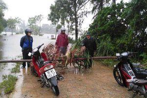 Hà Tĩnh sơ tán hàng chục nghìn hộ dân ngay trong đêm do mưa lớn, lũ lụt