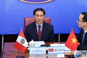Thứ trưởng Ngoại giao Việt Nam-Peru tham khảo chính trị, thúc đẩy hợp tác sau Covid-19