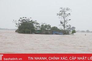 Mênh mông biển nước nhấn chìm hàng chục nghìn nhà dân ở Hà Tĩnh