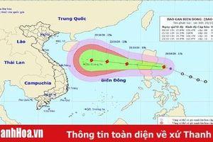 Công điện số 30/CĐ-TW về ứng phó với bão Saudel