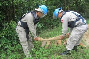 Peace Trees VietNam và 25 năm hỗ trợ Việt Nam 'biến điều không thể thành có thể'