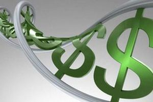 ACB, SPI, TVC, FID, DIH, TCM, ND2, TMS, YBM, L10, DDM, THB, AFX, NDP, FDG: Thông tin giao dịch lượng lớn cổ phiếu