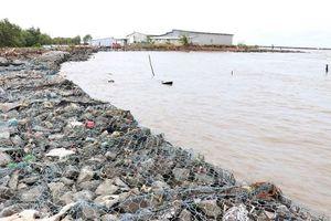 Khắc phục khẩn cấp tình huống sạt lở đê biển Tây tỉnh Cà Mau