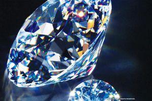 Người giàu bó gối ở nhà, các hãng kim cương đắc lợi