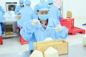 Vina T&T Group: Doanh nghiệp góp phần đưa trái cây xuất ngoại