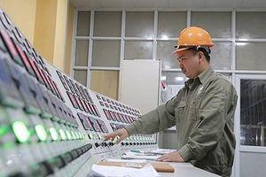 Phổ biến, áp dụng hiệu quả hệ thống tiêu chuẩn, quy chuẩn kỹ thuật quốc gia
