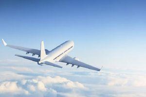 Đề xuất thu hồi giấy phép kinh doanh hàng không của công ty Bầu Trời Xanh