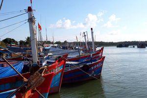Quảng Nam: Sớm kiện toàn các khu neo đậu cho tàu cá tránh bão