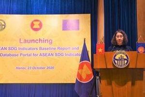 Công bố báo cáo đầu kỳ và cổng cơ sở dữ liệu trực tuyến các chỉ tiêu SDG của ASEAN
