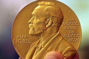 Vài suy nghĩ về thơ từ giải Nobel Văn học 2020