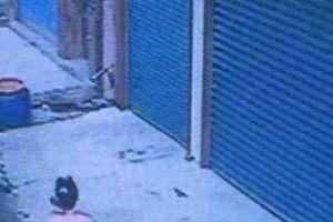Bé gái 12 tuổi đột tử vì tiếng chó sủa nên người chủ bị kết án tù, mãi 2 năm sau bản án bất ngờ được thay đổi