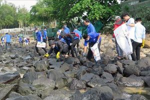 WWF hỗ trợ cải thiện môi trường tại đảo Hòn Yến (Phú Yên)