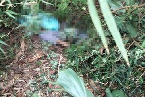 Thông tin pháp luật sáng 26/10: Tá hỏa phát hiện nam thanh niên nằm tử vong cạnh bao tải đựng chó trong rừng tràm