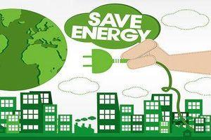 Yêu cầu báo cáo kế hoạch sử dụng năng lượng tiết kiệm và hiệu quả