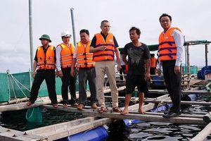 Phú Yên buộc toàn bộ người nuôi thủy sản vào bờ tránh bão