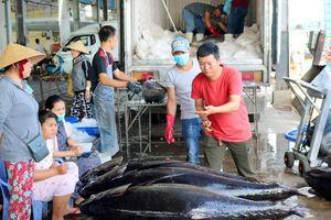 Xuất khẩu cá ngừ sang Italy tăng kỷ lục gần 8.600%