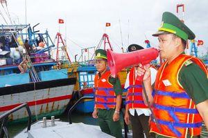 Bình Định: Huy động mọi nguồn lực để chống bão số 9
