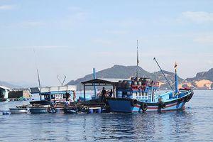 TP. Cam Ranh: Chủ động ứng phó bão số 9