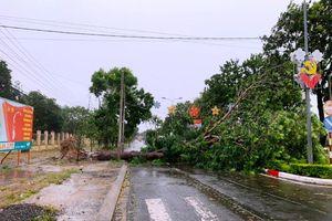 Bão số 9 gây nhiều thiệt hại ở Gia Lai