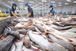 Các đại gia thủy sản tiếp tục gặp khó