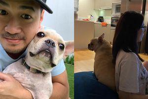 'Thánh thả thính' gọi tên Phillip Nguyễn, đăng ảnh mừng sinh nhật cún cưng vẫn biết cách nịnh Linh Rin