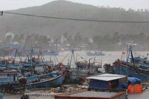 Trực tiếp bão Molave áp sát Quảng Nam - Quảng Ngãi: Mưa tầm tã, gió rít liên hồi