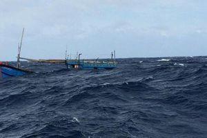 Tàu BĐ 98658 TS và 14 thuyền viên đã an toàn