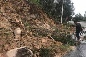 Xử lý nhanh sạt lở taluy, cây cối gãy đổ, nước tràn mặt QL1 qua Bình Định