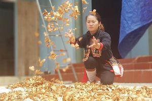 Gia tài của cô gái 'trụ cột' nghề thuốc làng Yên Sơn