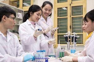 Giáo dục Đại học Việt Nam có ngành học lọt tốp thế giới