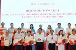 Bình Dương: Khen thưởng nhiều cá nhân, tổ chức có thành tích xuất sắc trong tham mưu, tổ chức Đại hội Đảng bộ lần XI