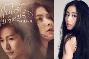 Siêu phẩm cẩu huyết 'Chiếc lá cuốn bay' được Hoa ngữ remake: Châu Vũ Đồng làm sao so với Baifern?