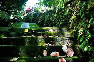 Phát triển du lịch sinh thái tại di tích quốc gia làng cổ Lộc Yên