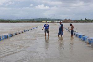 Chủ động ứng phó với siêu bão Goni được Philippines dự báo gây 'thiệt hại cấp thảm họa'