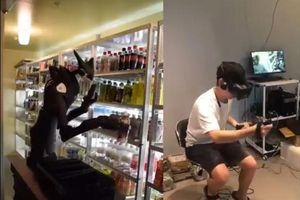 Robot làm việc trong cửa hàng tiện lợi tại Nhật Bản