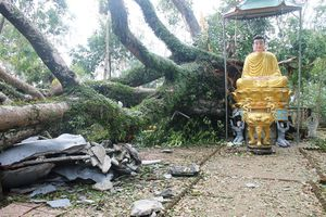 Quảng Ngãi : Xót xa cảnh chùa Thiên Ấn sau cơn bão số 9