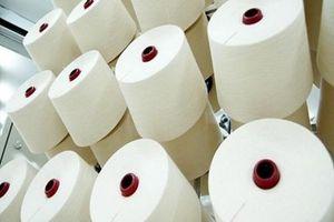 Sợi dún polyester của Việt Nam lại bị điều tra chống bán phá giá tại Mỹ